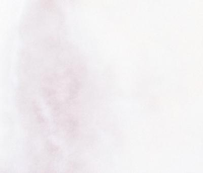 E. Jackson – Fresco Memoria Luberon (detail 1)